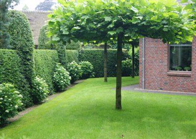 Onderhoud tuin Lunteren